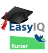 EasyIQkurserworkshopblogikonstor